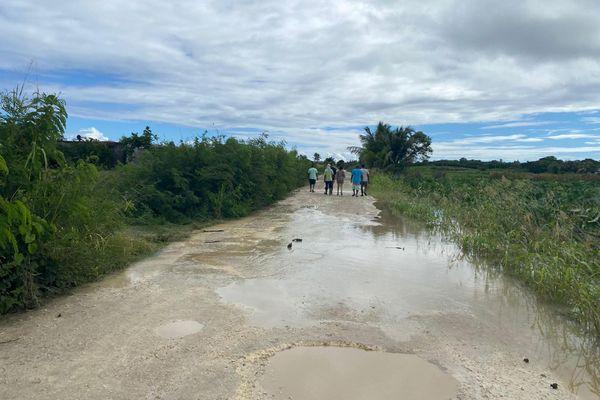 Inondations terres agricoles de Saint-François - 29.11.2020