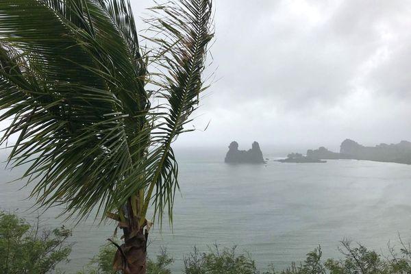 Dépression Uesi : poule de Hienghène sous la pluie