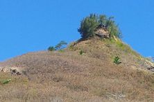 La sécheresse s'installe à Moorea