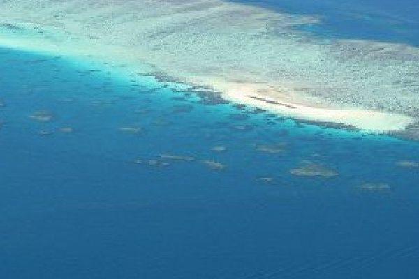 Michaelmas Cay sur la grande Barriière de cora