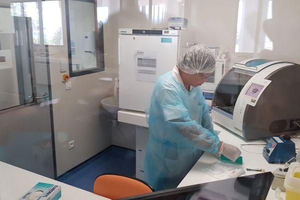 laboratoire CHU extraction ADN