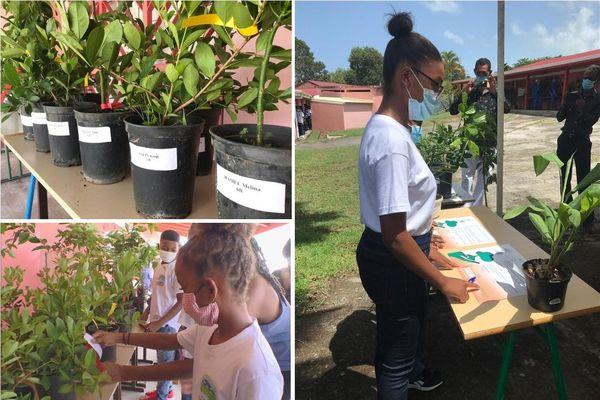 Distribution des arbres et signature de la charte des éco-citoyens.