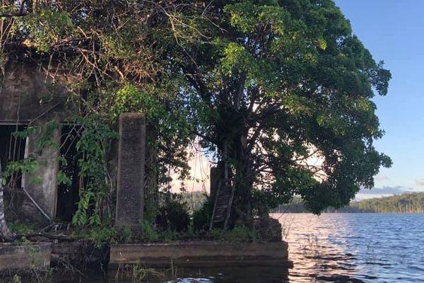 Des ruines sinistres au lac de retenue de du barrage de Petit-Saut