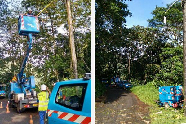 Faaone : une chute d'arbre provoque une panne de courant