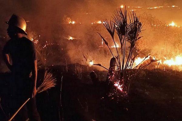 100 hectares de forêt incendiés 14 sept 2021 parc National d'Ankarafantsika Région Boeny