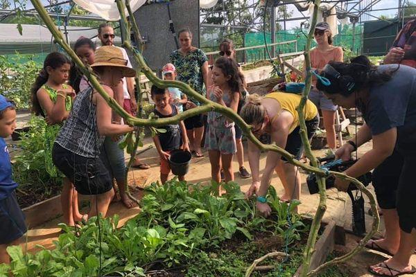 Visite de la ferme du lycée agricole de Vaimoana