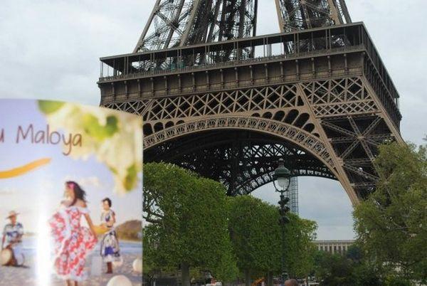 Pique-nique réunionnais au pied de la tour Eiffel