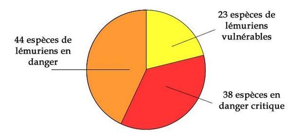 Pourcentage d'espèces de lémuriens menacés juillet 2020