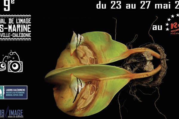 Festival image sous-marine 2018