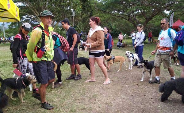 Première cani-rando, Dumbéa, 25 août 2019