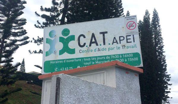 CAT, Centre d'aide par le travail, handicap, APEI, Tina