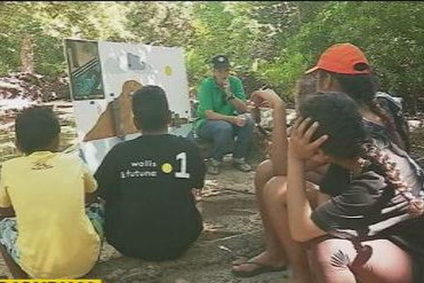 mangrove enfants