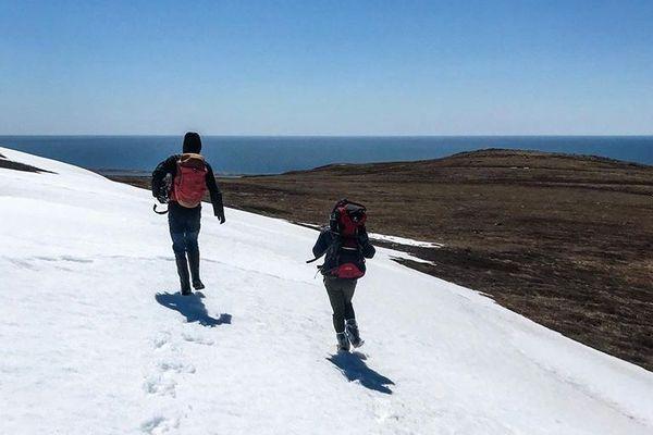 Miquelon : le Suroit culmine à 222 mètres.