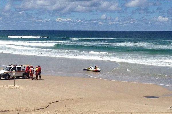 Attaque requin australie 02/2015