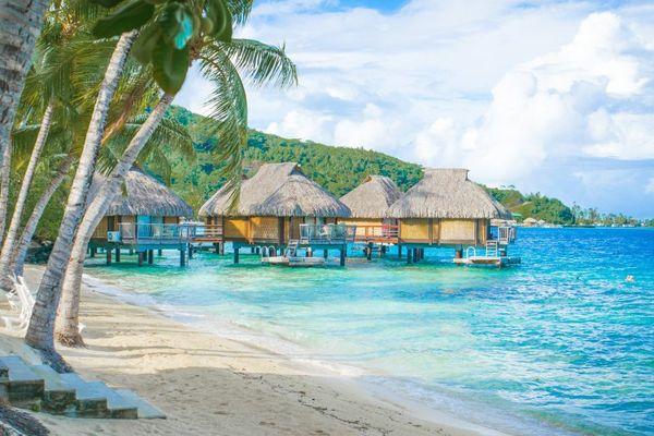 13 ème edition du Tahiti Travel Exchange
