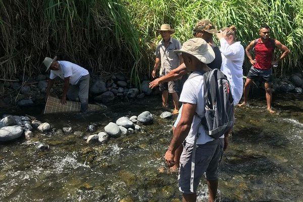 Les pêcheurs se mobilisent contre le braconnage des bichiques dans l'Est.