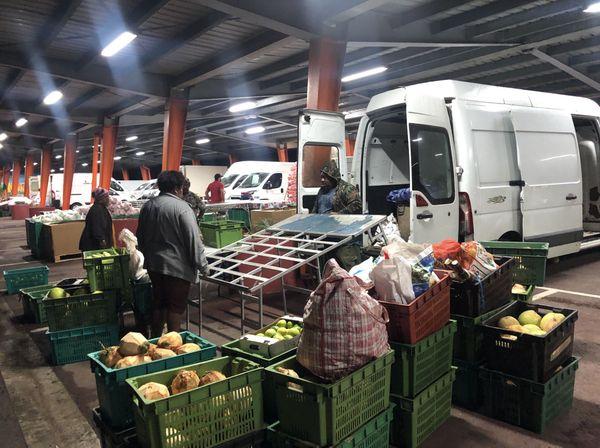 Producteurs de Houaïlou au marché de gros de Ducos, 16 mai 2020
