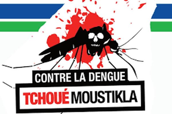 Contre la dengue, tchoué moustikla