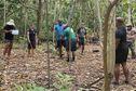 Environnement : à la traque des cochons sauvages dans les îlots de Wallis