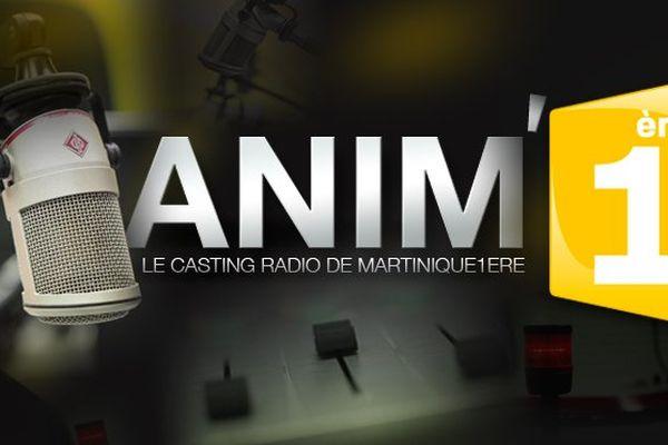 Anim1ere