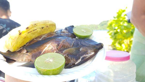 du poisson frais : un délice de l'îlot !