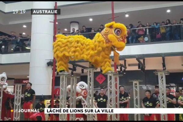 Les lions s'éveillent pour le nouvel an chinois
