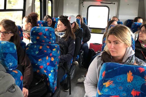 harfangs bus