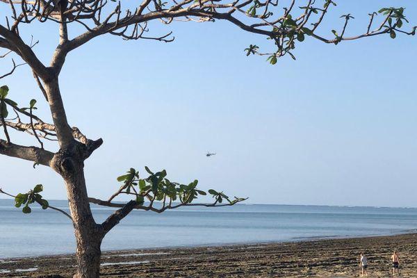 Petite-terre, plage des Badamiers