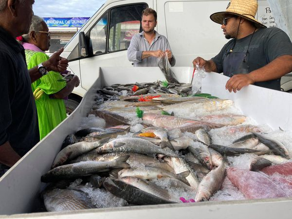 Premier marché aux halles de Dumbéa centre, samedi 17 juillet 2021, poissonnier