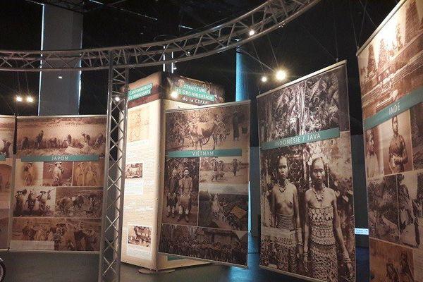 Exposition Darbousier au MACTe