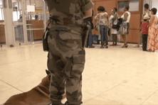 Suite aux terribles attentats de Paris perpétrés ce vendredi 13 novembre, l'aéroport Félix Eboué à Matoury est passé en plan Vigipirate renforcé.