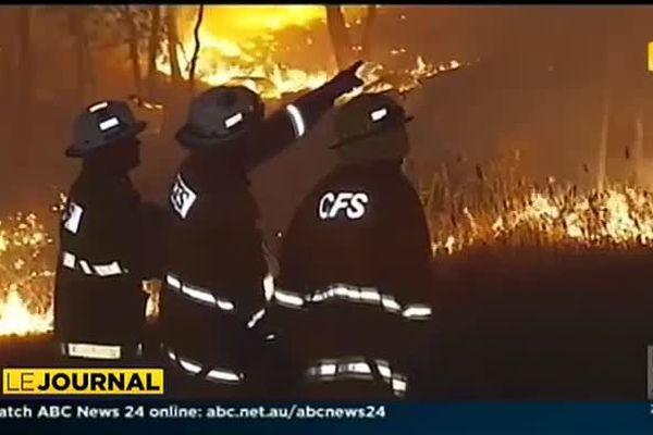 Incendie en Australie : le pire attendu pour mercredi.