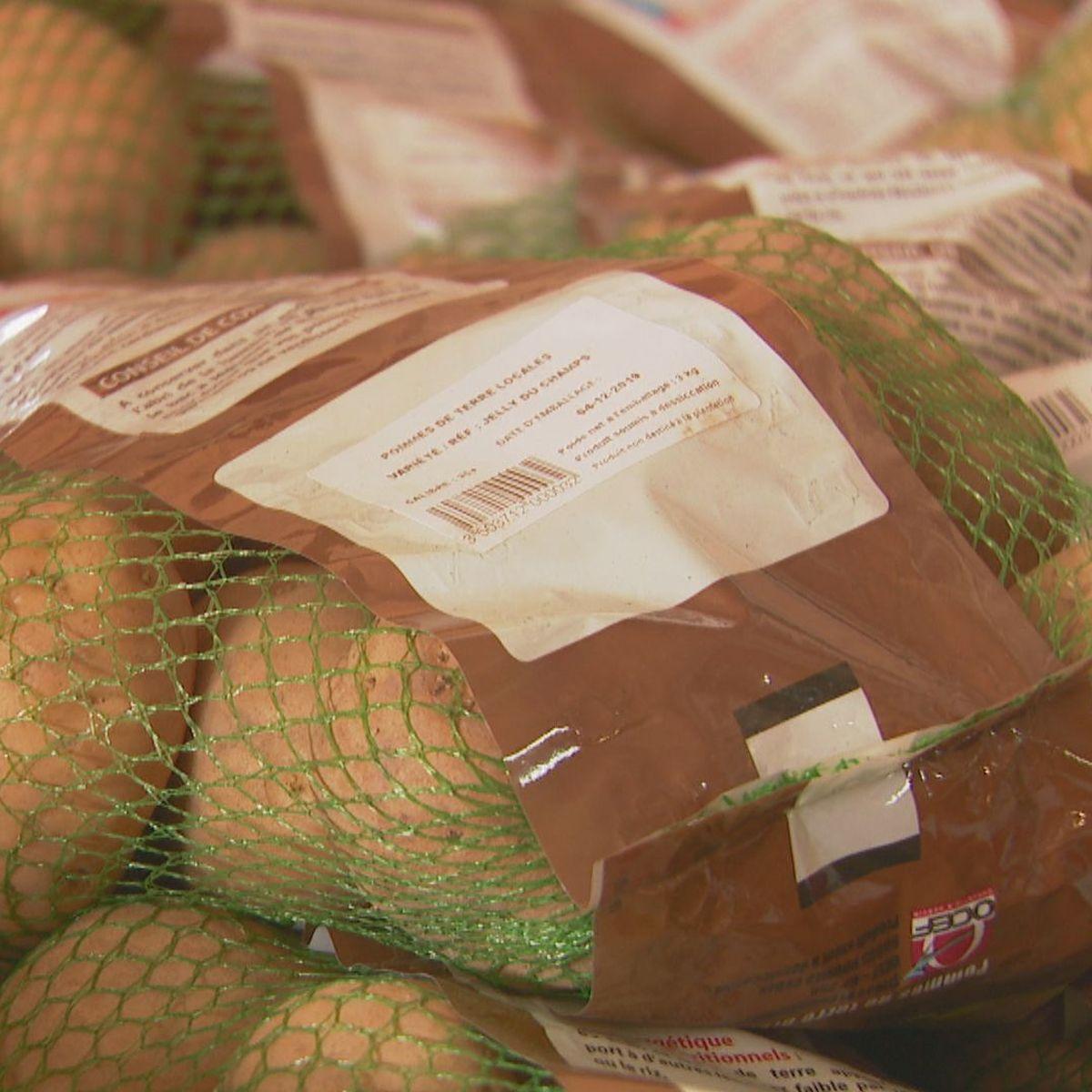 La pomme de terre calédonienne retrouve la patate
