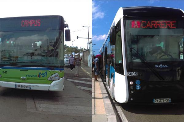 Bus et TCSP Mozaik