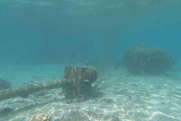 Pollution dans le lagon à Paea