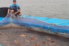 La pêche aux pouattes est minutieuse...