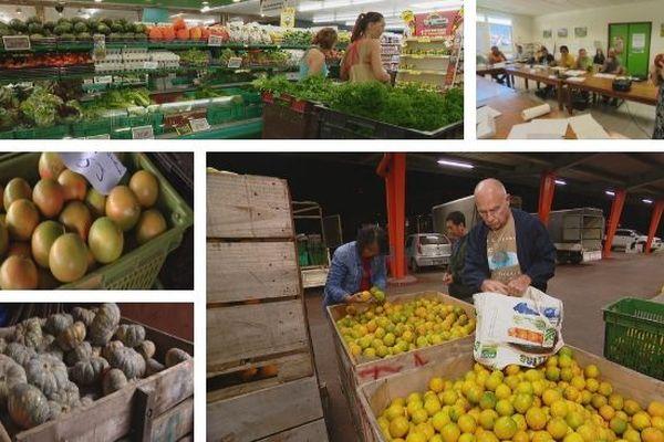 Fruits et légumes. Formation conservation