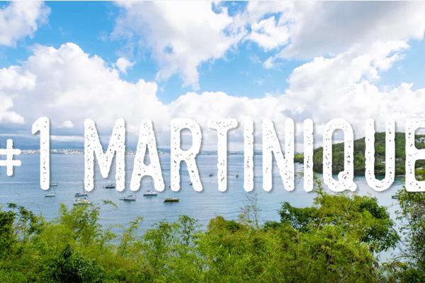 Oyster Martinique tourisme