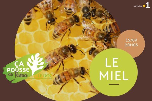 ça pousse au fenua : le miel