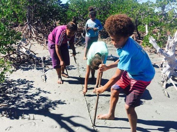 Pouébo: reboisement à Balade par les enfants