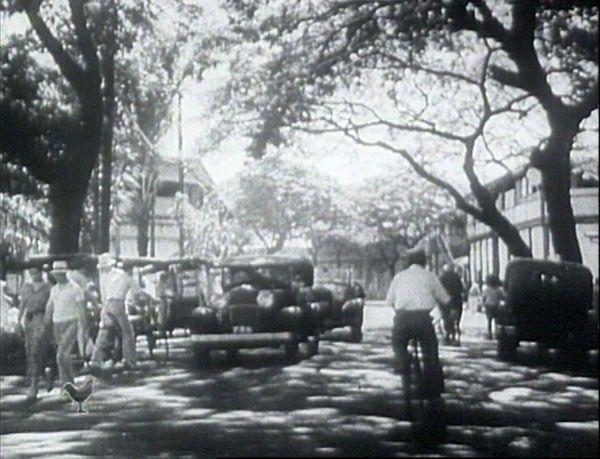 Cinematamua rue