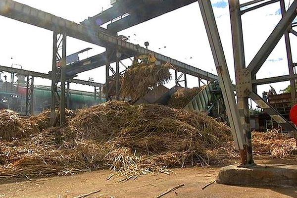 Campagne sucrière : usine de Bois-Rouge en activité