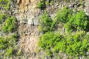 Mafate: après des travaux, le sentier de la canalisation des Orangers est sécurisé