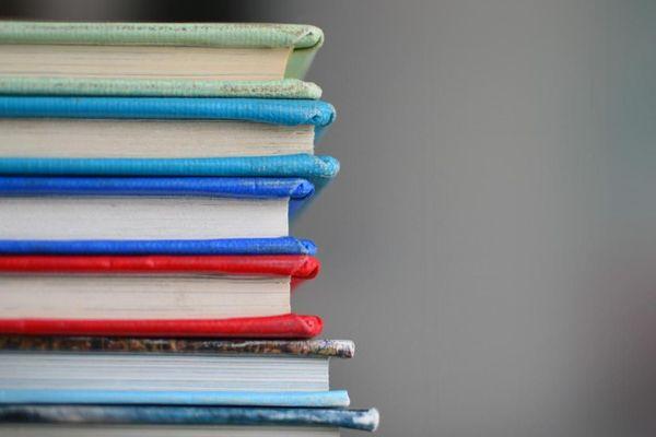 livres/manuel scolaire