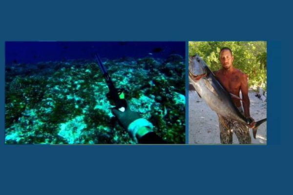 Paea : un pêcheur se fait mordre par un requin gris