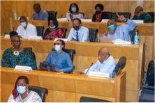 Des élus du GSPM réunis en plénière à l'Assemblée de Martinique.