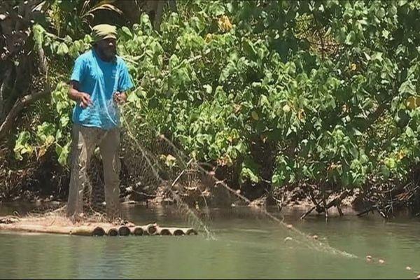 A Ponérihouen, pêcheur à la senne dans une branche de rivière, janvier 2019