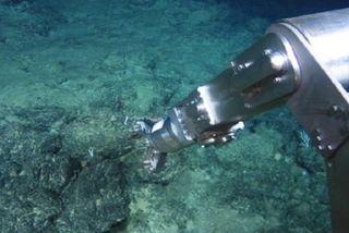 L'exploitation minière des fonds marins peut rendre les Îles Cook