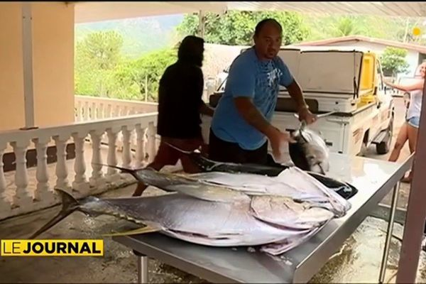 Hiva Oa :  la pêche sur un bonitier