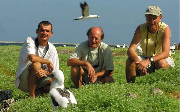 L'explorateur Jean-Louis Etienne à Clipperton en compagnie de deux ornithologues, Matthieu Le Corre et Henri Weimerskirch, spécialistes des fous masqués